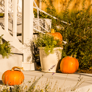 9-fall-home-decor-ideas-pumpkins.png
