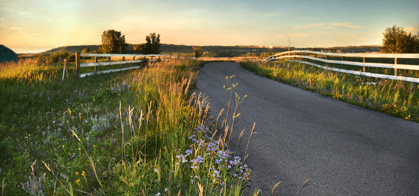 community-spotlight-willows-of-river-heights-road.png