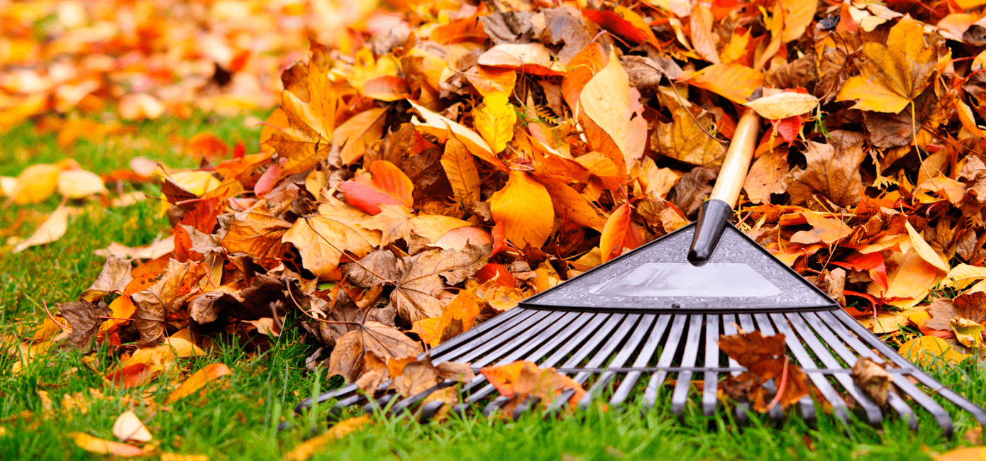 your-guide-easy-fall-home-maintenance-raking-leaves.png