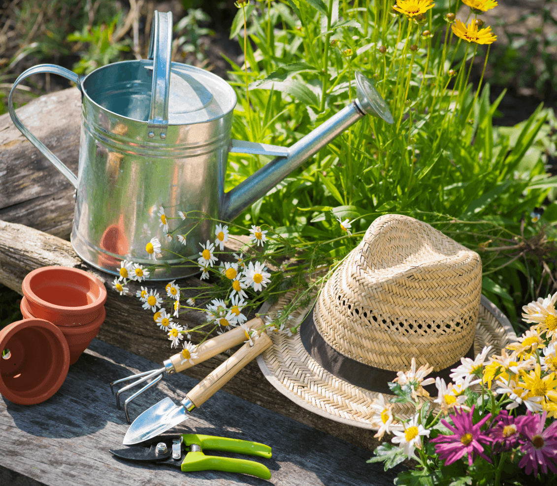 13 Ways to Beautify Your Backyard Garden Tools image