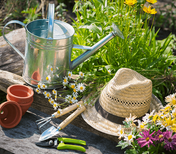 13 Ways to Beautify Your Backyard Garden Tools image