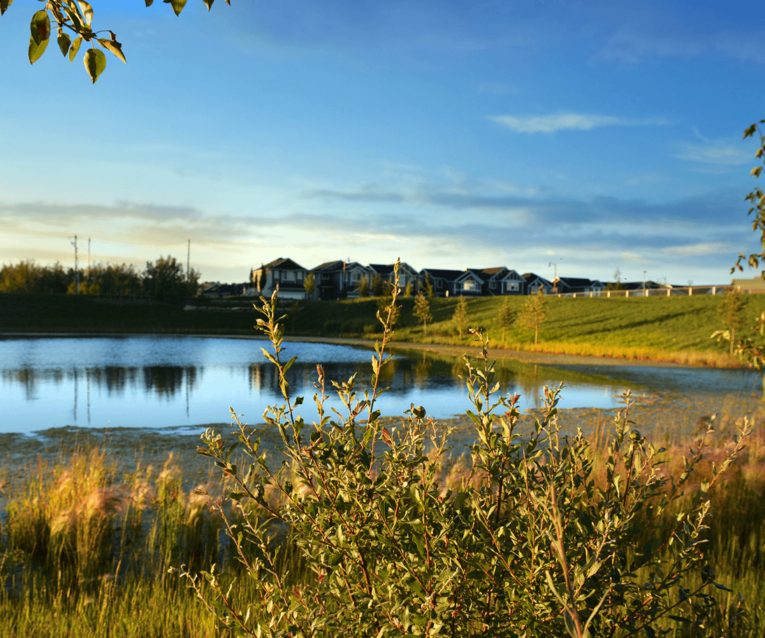 Quick Possession Feature Hillside and Fairview Wetlands Image