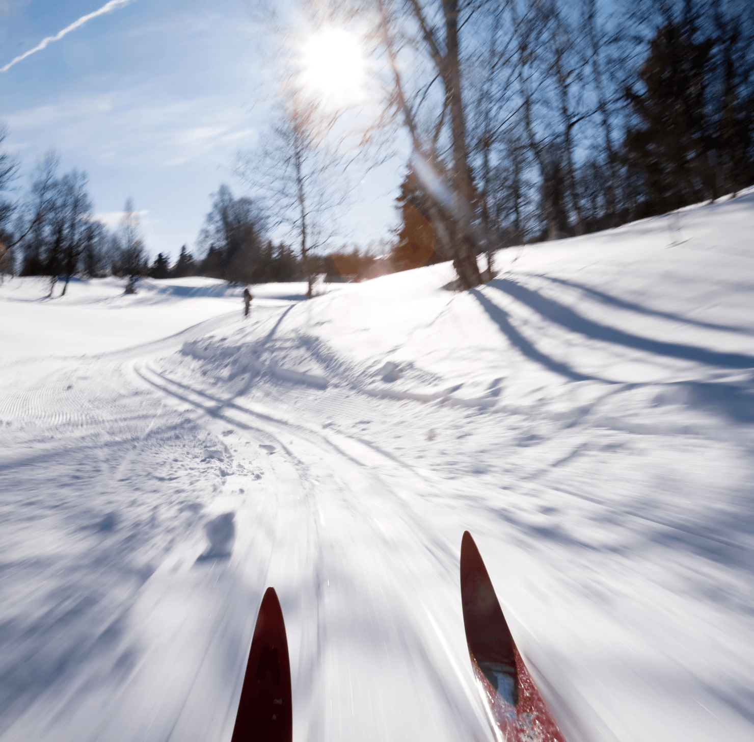 10 Reasons to Love Winters in Calgary Skis Image