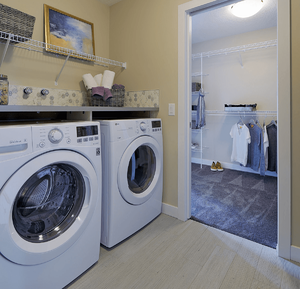 essential-features-you-need-first-home-laundry-image