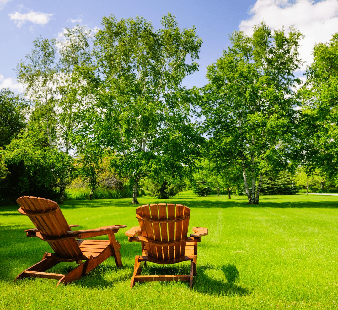Picking and Planting Trees in Your Calgary Yard Chairs Image