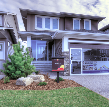 Picking and Planting Trees in Your Calgary Yard Evergreen Image